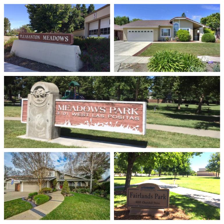 Pleasanton Meadows Neighborhood
