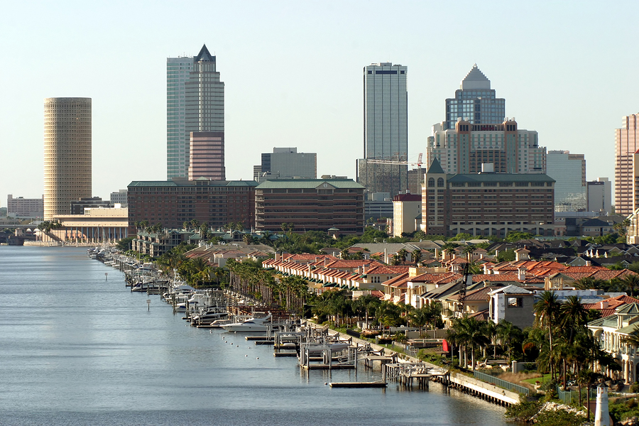 Tampa Bay Water Front View