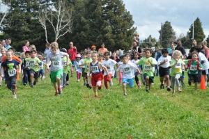 17th Annual Run for Zimbabwe in Mountain View