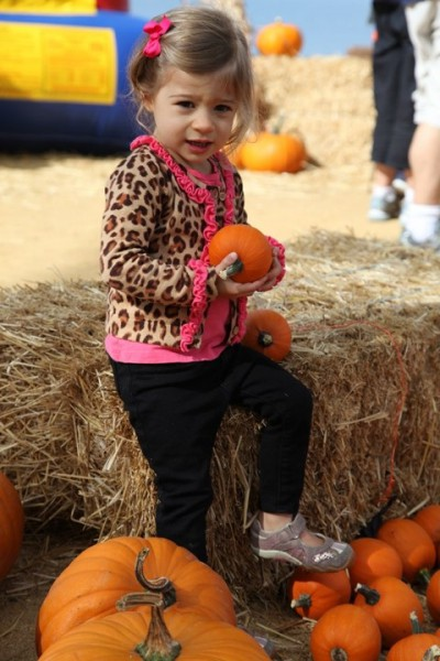 4th Annual Shoreline Pumpkin Splash!